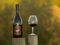 Stag Hollow Pinot Noir